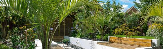 Suffolk Contemporary Mediterranean Garden